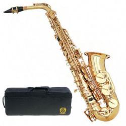 Sax Contralto Grassi Sal700...